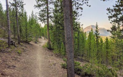 Day 6 〣 Colorado Trail Journal