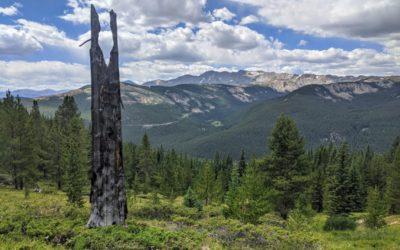 Day 9 〣 Colorado Trail Journal