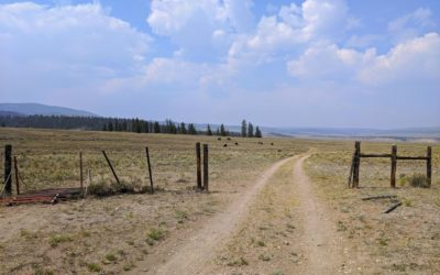 Day 19 〣 Colorado Trail Journal