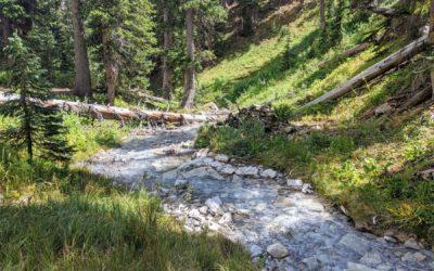 Day 26 〣 Colorado Trail Journal