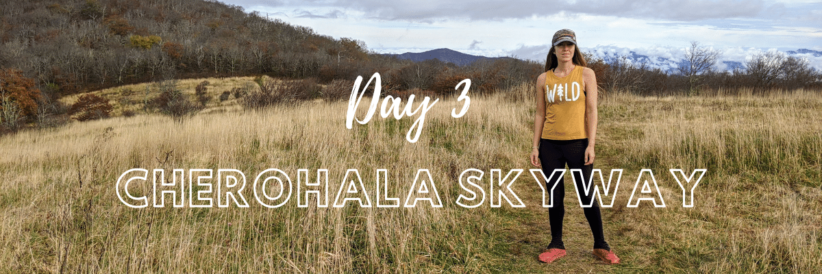 Huckleberry Knob Trail | Cherohala Skyway | A Hiker's Week in North Carolina